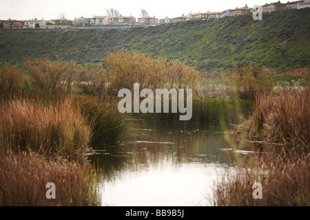 Ballona Creek, Playa del Rey, California USA Foto Stock