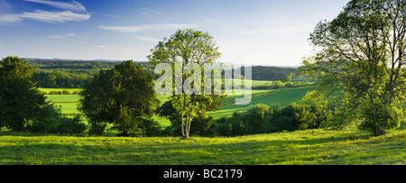 Vista sud da North Downs a Newlands Corner, Surrey, Regno Unito Foto Stock