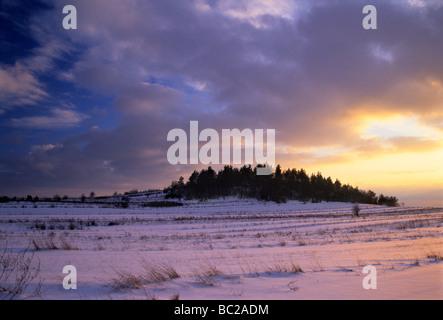 Campo azienda agricola biologica neve invernale Foto Stock