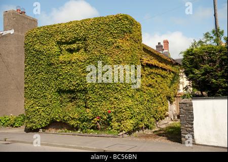 Casa ricoperta di edera Llanon village Ceredigion west wales UK Foto Stock