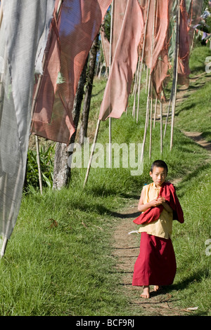 India, Sikkim, ortografia, Sangachoeling Gompa, il secondo più antico Gompa in Sikkim, monaco novizio camminando lungo il sentiero da bandiere di preghiera Foto Stock