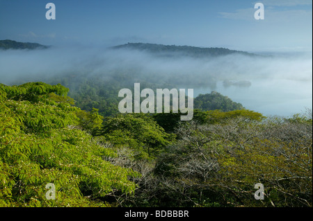 Early Morning mist nel parco nazionale di Soberania, Repubblica di Panama. Rio Chagres è visibile sulla destra. Foto Stock
