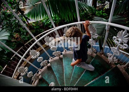Un ragazzo decending le scale nella Casa delle Palme, Kew Gardens a Londra Foto Stock