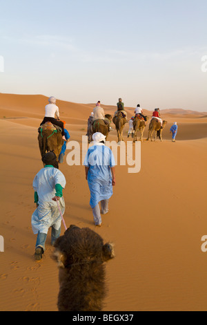 I turisti in una corsa in cammello dune di Merzouga Marocco Sahara Foto Stock