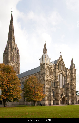 La Cattedrale di Salisbury e la stretta in autunno Foto Stock
