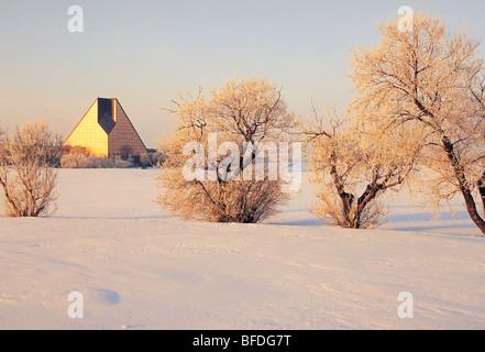 Trasformata per forte gradiente la brina su alberi in inverno, Royal Canadian Mint, Winnipeg, Manitoba, Canada Foto Stock