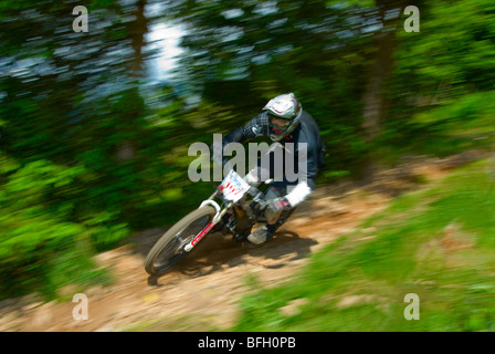 Pilota in punti nazionali serie Downhill Mountain bike race in Ae Forest Scozia Scotland Foto Stock
