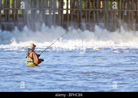 Uomo di Pesca a mosca nel fiume Rosso. Lockport, Manitoba, Canada. Foto Stock