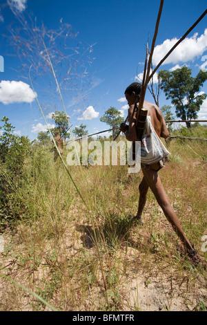 La Namibia, Bushmanland. Armati di arco e frecce e bastoni di scavo, un boscimane di passi attraverso il bushveld Foto Stock