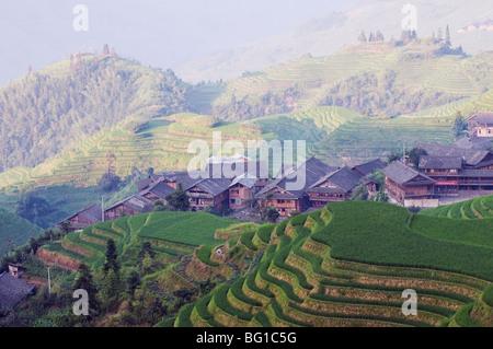 Draghi Backbone terrazze di riso, Longsheng, provincia di Guangxi, Cina e Asia Foto Stock