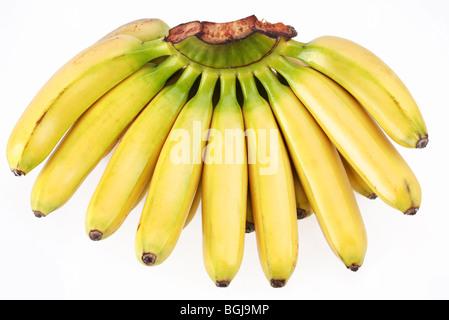 Grappolo di banane isolati su sfondo bianco Foto Stock