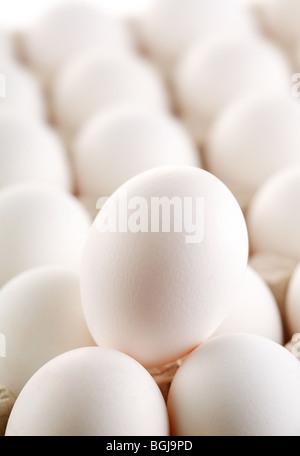 Large White gli albumi delle uova. Foto Stock