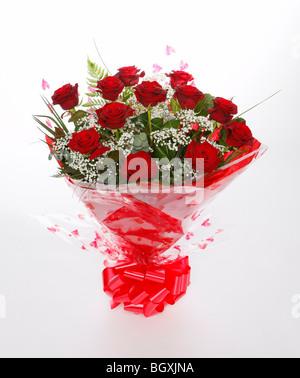 Una dozzina di rose rosse per il giorno di San Valentino. Fiori su fondo bianco Foto Stock