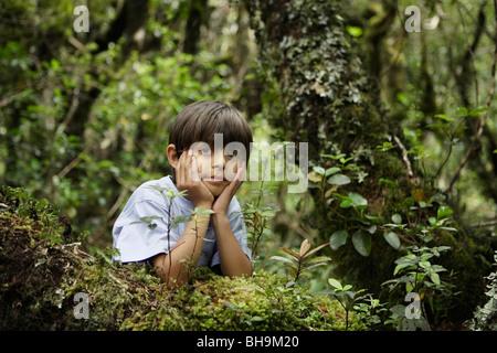 Ragazzo nel bosco Foto Stock