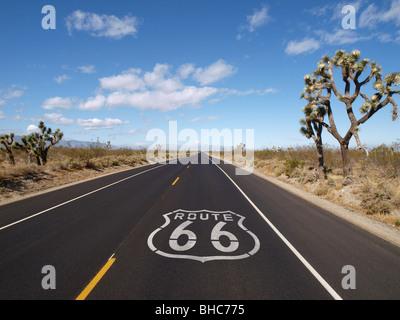 Route 66 marciapiede di firmare con alberi di Joshua nella California Meridionale. Foto Stock