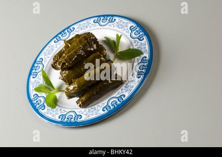 Le foglie di vite ripiene Beirut Libano Medio Oriente Foto Stock