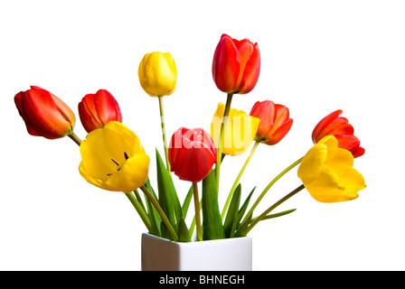 Un mazzo di fiori di tulipani Foto Stock