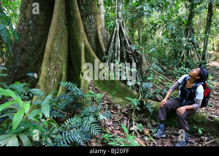 Ragazza e grande albero di Ceiba a Cerro Pirre nel parco nazionale di Darien, provincia di Darien, Repubblica di Panama.