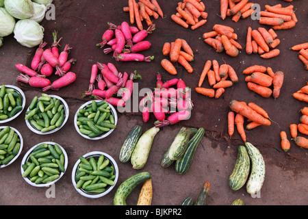 Mercato Chalai, Trivandrum, Thiruvananthapuram, Kerala, India, Asia Foto Stock