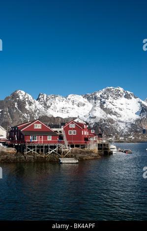Tradizionale in legno rosso Rorbu fishermens' capanne nel villaggio di Henningsvaer in Isole Lofoten in Norvegia