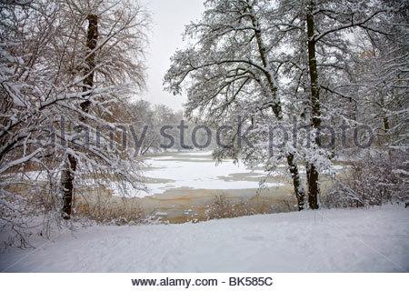 Snow-Covered alberi e lago ghiacciato in Clara Zetkin Park dopo la nevicata nei primi giorni di gennaio 2010. Leipzig, Foto Stock