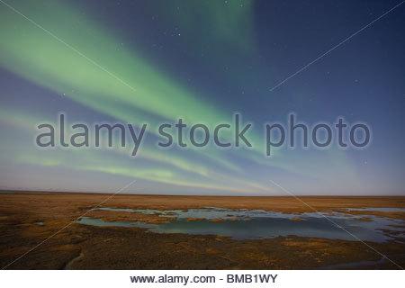 Tendaggi colorati di luci del nord (aurora boreale) dance nel cielo notturno sopra la tundra artica sulla pianura Foto Stock