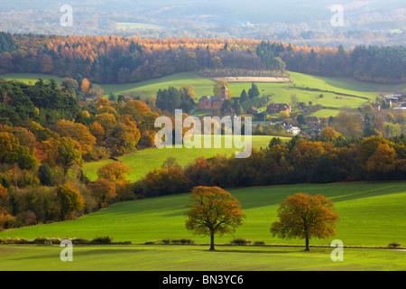 Vista verso il villaggio di Albury, Newlands Corner Foto Stock