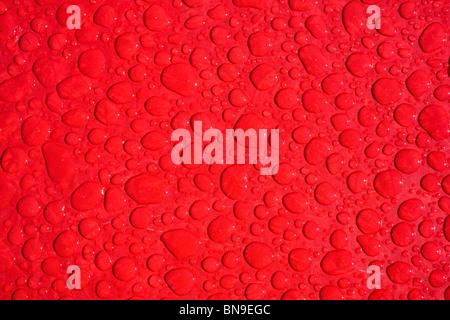 Close up macro fotografia di gocce di pioggia su una tabella rossa Foto Stock