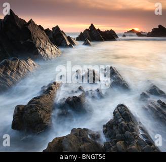 Drammatico scenario costiero al tramonto, Hartland Quay, North Devon, in Inghilterra. Molla (aprile 2010). Foto Stock