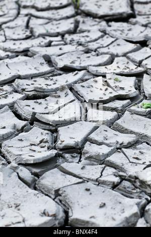 Asciugare incrinato fango di argilla durante una recente siccità. Foto Stock