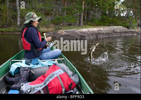 Ragazza la manipolazione di un luccio del nord, Esox lucius, catturati nel lago Vansjø, Østfold, Norvegia. Il lago Foto Stock