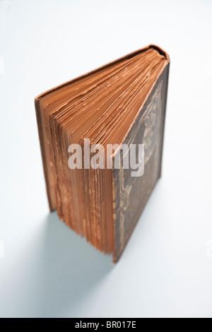 Libro aperto ad un angolo che mostra le pagine di antiquariato vintage Foto Stock