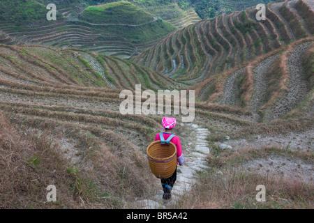 Zhuang ragazza cestello di trasporto in montagna, Longsheng, Guangxi, Cina Foto Stock