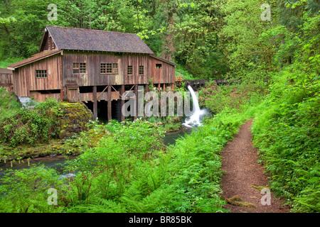 Il Cedar Creek Grist Mill in primavera con il percorso. Bosco, Washington Foto Stock