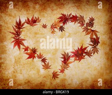 Forma di cuore fatta da foglie Foto Stock