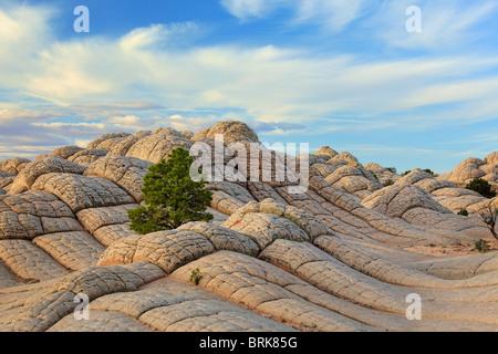 Le formazioni rocciose nella tasca bianco unità delle scogliere di Vermilion monumento nazionale, Arizona Foto Stock