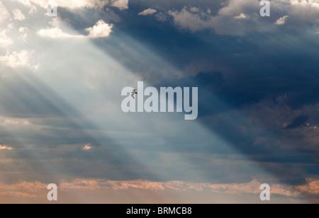 Sole che splende attraverso le nuvole scure e una silhouette di un uccello che sta volando su sunbeam Foto Stock