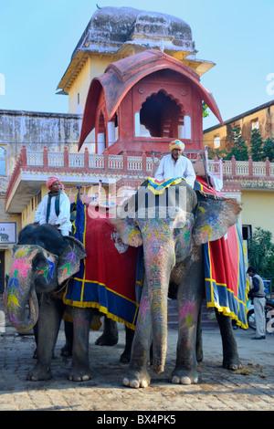 Decorate elefanti, Amber Fort Jaipur. Foto Stock