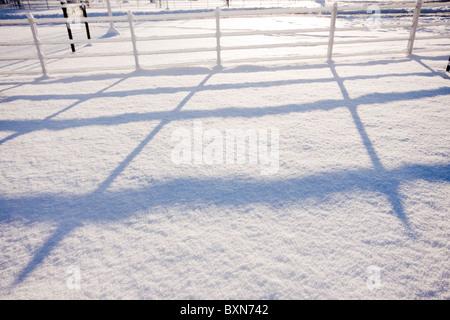 Sole di mattina facendo lunghe ombre sulla neve Foto Stock
