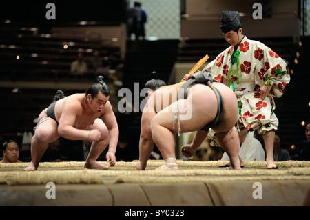 Due lottatori di sumo a partire lo scontro, Grandi Campionati di Sumo maggio 2010, Ryogoku Kokugikan, Tokyo, Giappone Foto Stock