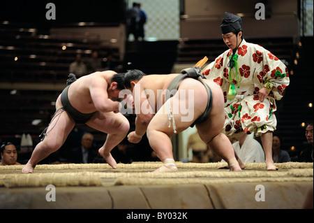Due lottatori di sumo di attaccare, Grandi Campionati di Sumo maggio 2010, Ryogoku Kokugikan, Tokyo, Giappone Foto Stock