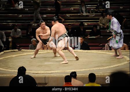 Due lottatori di sumo durante bout, Grandi Campionati di Sumo maggio 2010, Ryogoku Kokugikan, Tokyo, Giappone Foto Stock