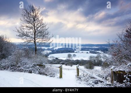 Il sole comincia a rompere attraverso il cloud in una fredda mattina invernale a Newlands Corner sull'Albury Downs Foto Stock