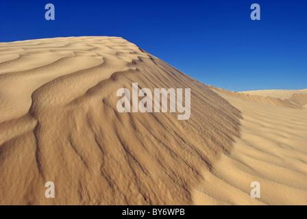 Le dune di sabbia del deserto del Sahara (Grande Erg Orientale) vicino a Douz, Tunisia Foto Stock
