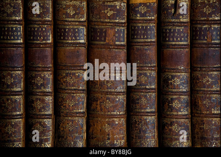 Libri antichi dettaglio