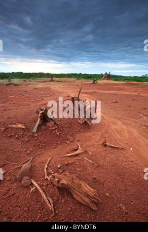 Suoli erosi in Sarigua national park (deserto), Herrera provincia, Repubblica di Panama. Foto Stock