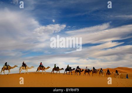 Il tuareg blu uomo berbero leader di un gruppo di piloti di cammelli in una linea per la Erg Chebbi deserto in Marocco con la luna e le nuvole