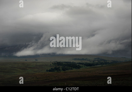 Basso appeso nube sulle montagne di Wicklow, Irlanda