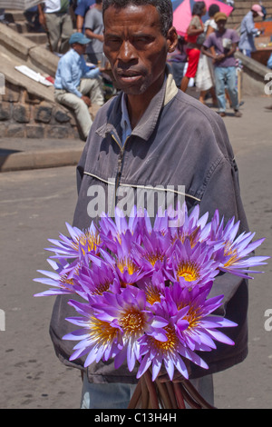 Cieco di vendita di fiori di loto. Mercato. Antananarivo. A volte abbreviato come tana. Capitale del Madagascar. Foto Stock