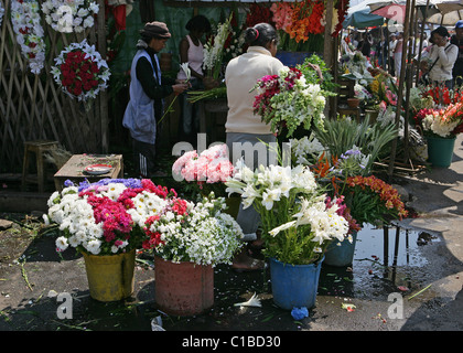 Vivacemente colorato visualizza di fiori in vendita nelle bancarelle del mercato di Antananarivo, capitale del Madagascar Foto Stock